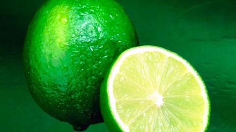 Produção de Limão Taiti