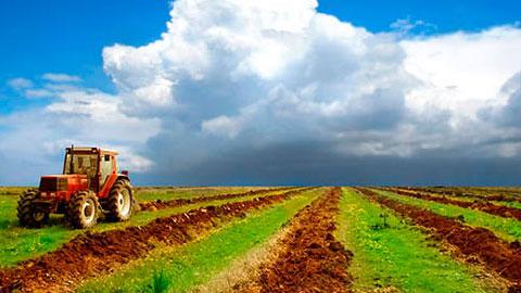 13 Cursos na Área Irrigação