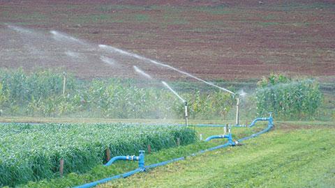 Manejo de Irrigação - Quando e Quanto Irrigar