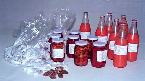 Processamento de Tomate