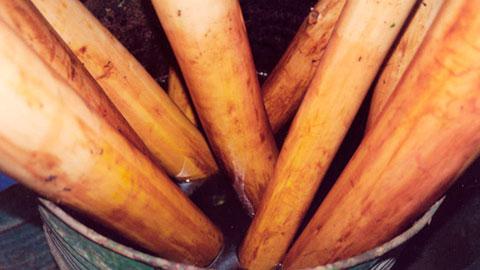 Secagem e Tratamento de Madeira na Fazenda