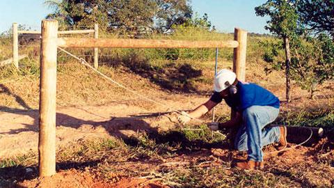 Construção de Cercas na Fazenda