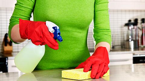 Treinamento de Empregada Doméstica