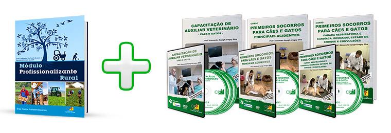 Curso Profissionalizante de Auxiliar Veterinário - Cães e Gatos