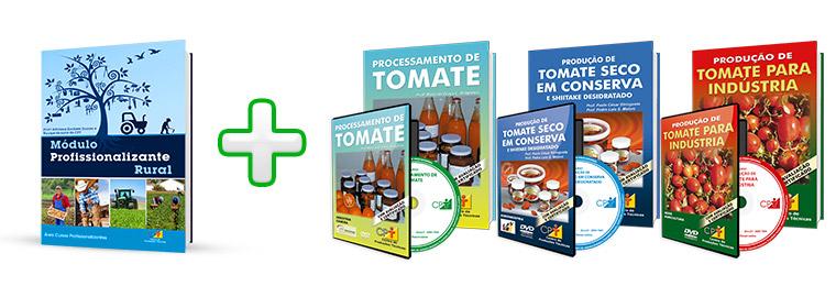 Curso Profissionalizante de Processador de Tomate