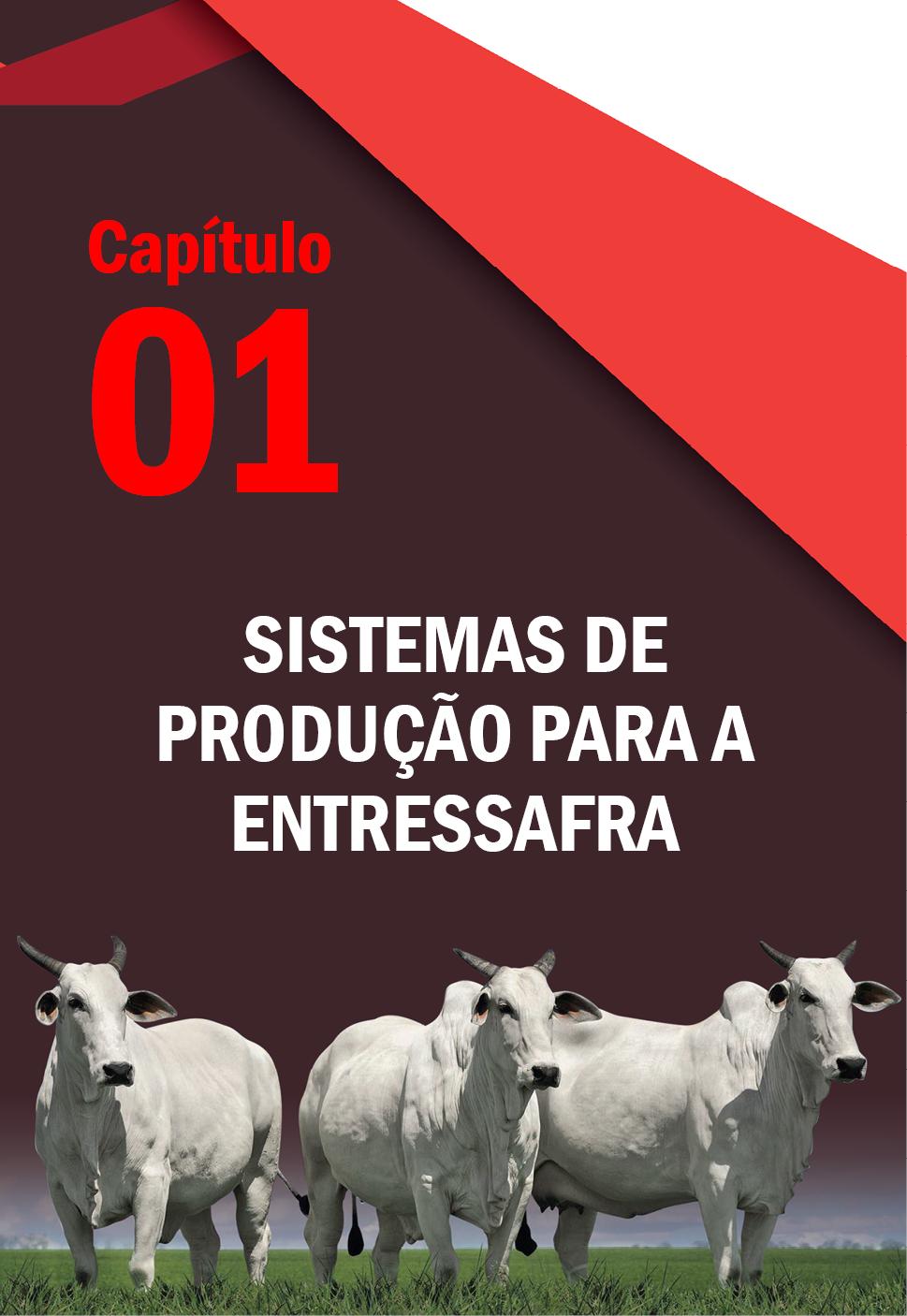 Estratégias para a Entressafra - Na Pecuária de Corte