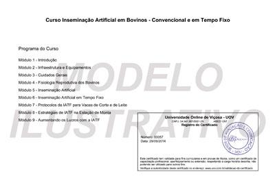 Verso do certificado da UOV – Universidade Online de Viçosa