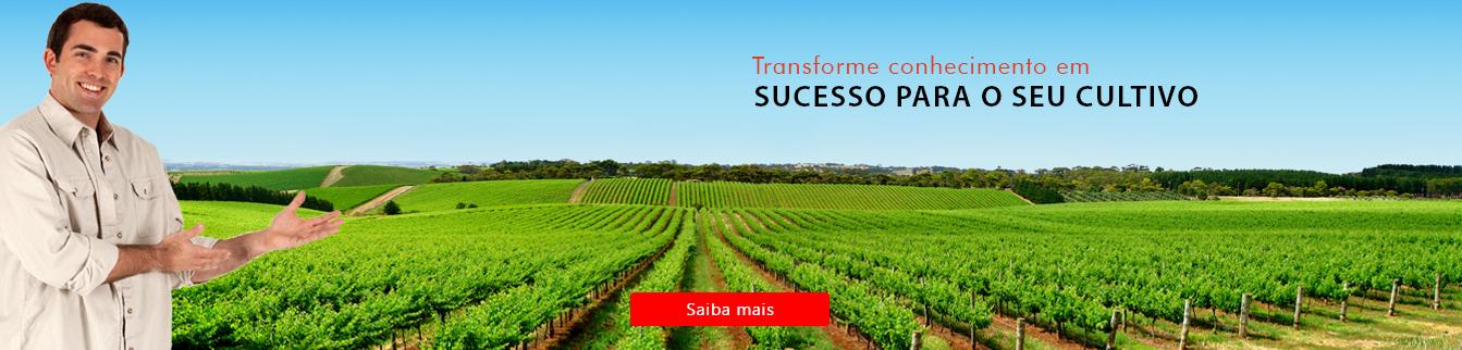 Transforme conhecimento em sucesso para o seu cultivo