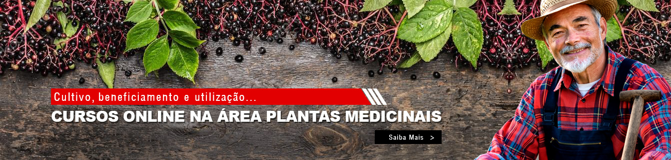 Cultivo, beneficiamento e utilização - Cursos online na área Plantas Medicinais