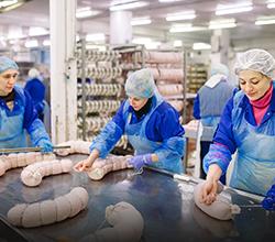 Tecnologia e Processamento de Alimentos de Origem Animal