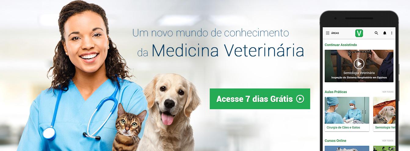 Um novo mundo de conhecimento de Medicina Veterinária