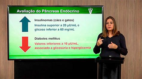 Bioquímica Clínica da Função Pancreática