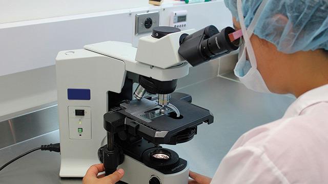 Patologia Clínica Veterinária