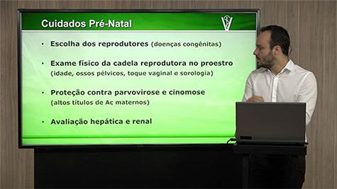 Pediatria e Neonatologia