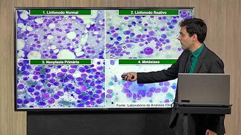 Citodiagnóstico em Oncologia Veterinária