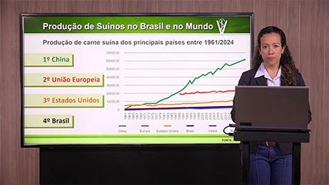 Panorama da Produção de Suínos no Brasil e no Mundo