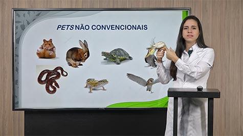 Mercado de Pets Não Convencionais