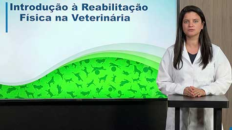 Introdução à Reabilitação Física na Veterinária