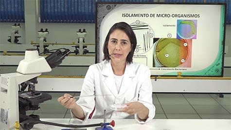 Isolamento de Micro-Organismos