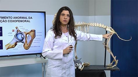 Doenças Articulares: Displasia Coxofemoral