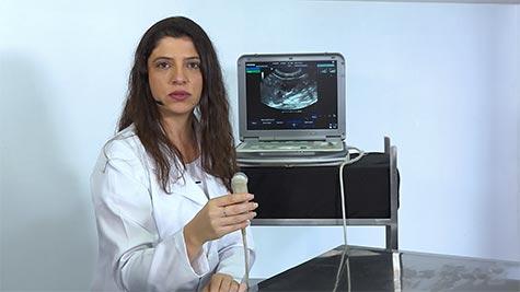 Princípios da Ultrassonografia