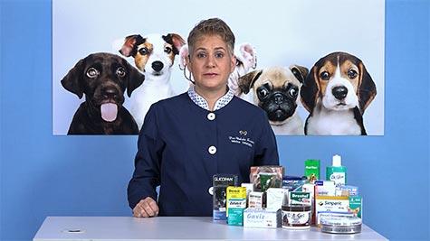 Farmacologia Veterinária: Farmacocinética