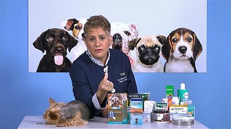 Farmacologia Veterinária: Farmacodinâmica
