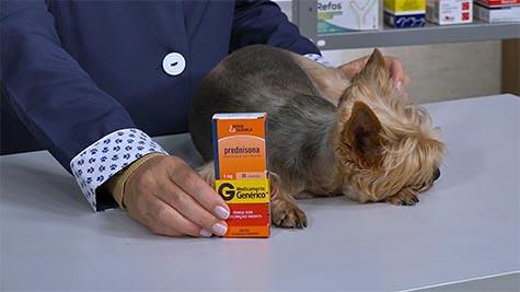 Farmacologia Veterinária: Drogas Anti-Inflamatórias Esteroidais