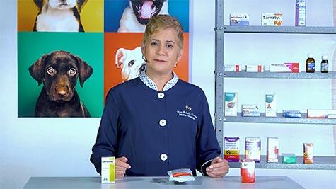 Drogas Antiparasitárias: Ectoparasiticidas e Antiprotozoários